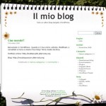 Regalo il vecchio tema del mio blog