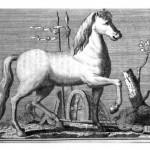 Google, i libri, la pittura e il disegno: un tuffo nel passato