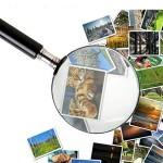 Motori di ricerca per trovare foto e immagini gratuite