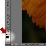 Convertire una foto in bianco e nero col metodo Mappa Sfumatura